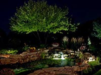 landscape lighting for pools, ponds and spas