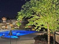 Backyard Landscape Lighting