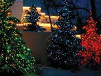 Outdoor Christmas Lighting